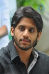 Naga Chaitanya Photos - 11 of 44