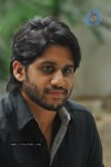 Naga Chaitanya Photos - 13 of 44