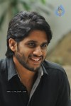 Naga Chaitanya Photos - 17 of 44