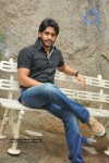 Naga Chaitanya Photos - 21 of 44