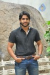 Naga Chaitanya Photos - 33 of 44