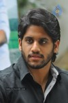 Naga Chaitanya Photos - 37 of 44