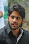 Naga Chaitanya Photos - 41 of 44