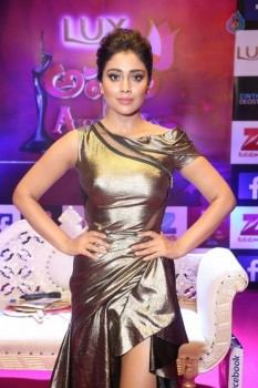 Shriya Saran at Zee Telugu Apsara Awards :09-04-2017