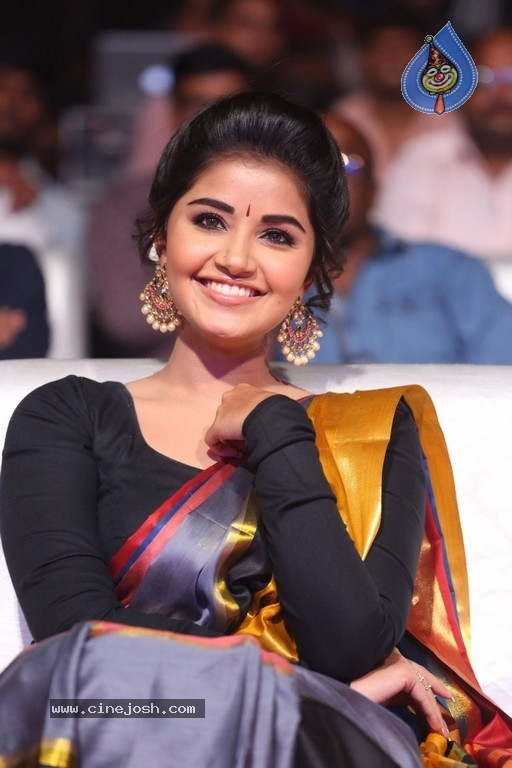 Anupama Parameswaran Tej I Love You Audio Launch Photo 12