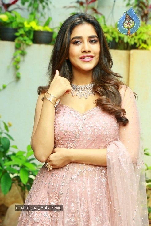 Nabha Natesh Photos - 16 / 32 photos