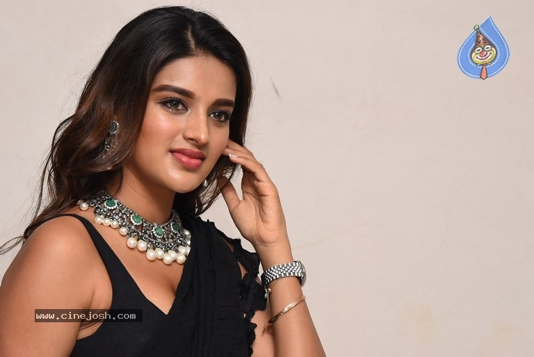Nidhi Agarwal New Stills - 12 / 19 photos