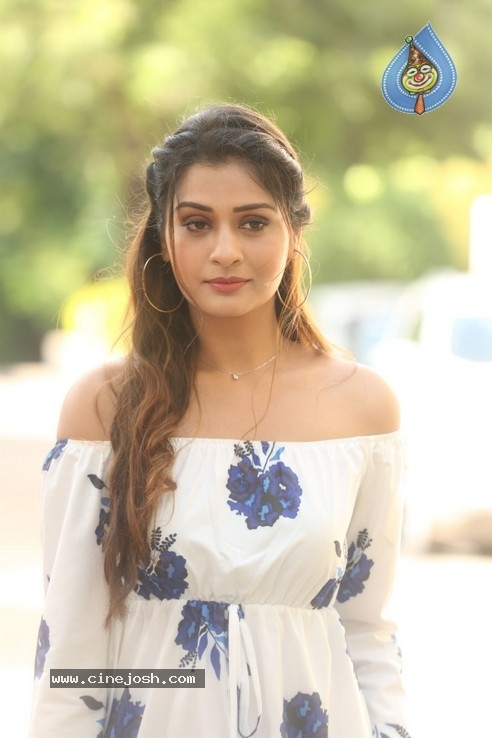 Payal Rajput Stills - 12 / 32 photos