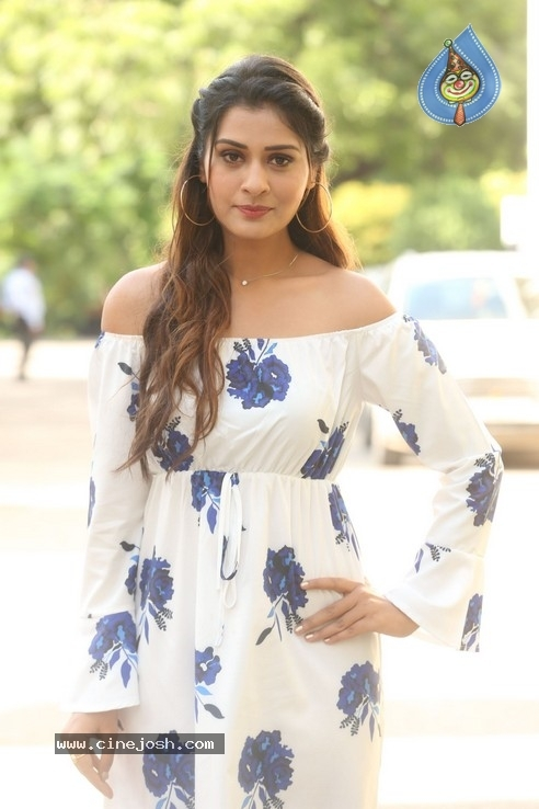 Payal Rajput Stills - 13 / 32 photos