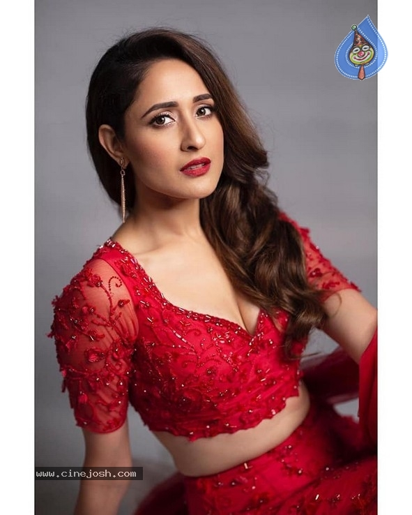 Pragya Jaiswal Stills - 4 / 4 photos
