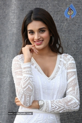 Nidhhi Agerwal Interview Photos - 16 of 20