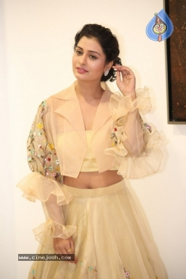 Payal Rajput Photos - 23 of 42