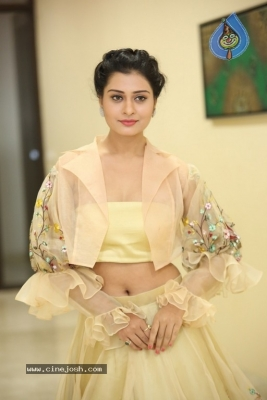 Payal Rajput Photos - 30 of 42