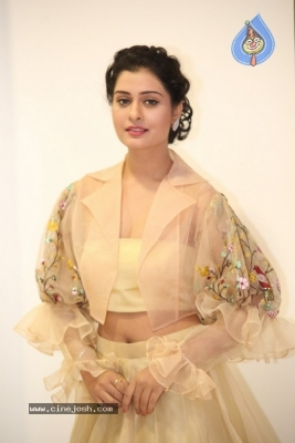 Payal Rajput Photos - 35 of 42
