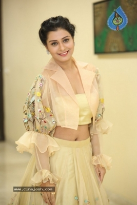 Payal Rajput Photos - 36 of 42