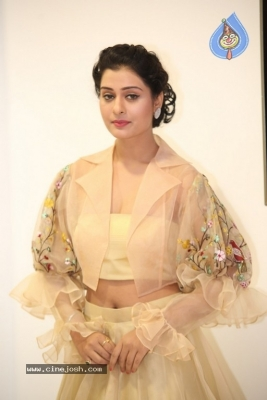 Payal Rajput Photos - 37 of 42