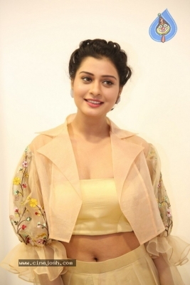 Payal Rajput Photos - 38 of 42