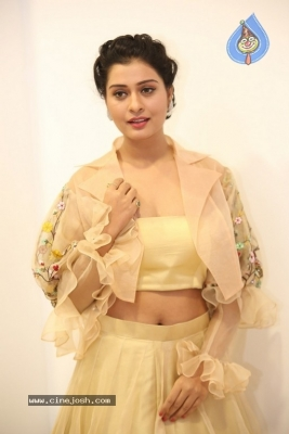 Payal Rajput Photos - 39 of 42