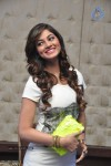 Shilpi Sharma New Photos - 11 of 34