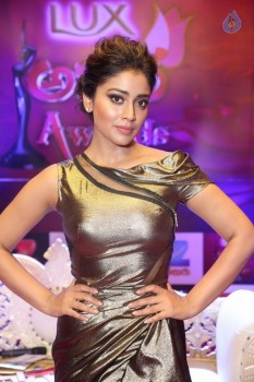 Shriya Saran at Zee Telugu Apsara Awards - 8 of 21