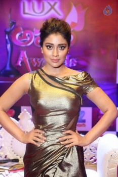 Shriya Saran at Zee Telugu Apsara Awards - 9 of 21