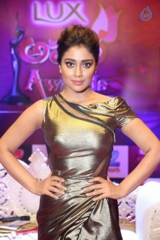 Shriya Saran at Zee Telugu Apsara Awards - 11 of 21