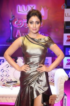 Shriya Saran at Zee Telugu Apsara Awards - 13 of 21