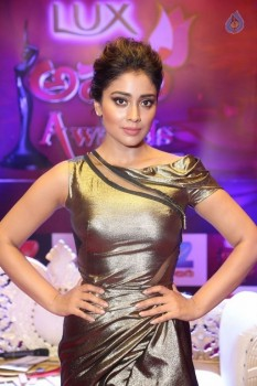 Shriya Saran at Zee Telugu Apsara Awards - 17 of 21