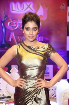 Shriya Saran at Zee Telugu Apsara Awards - 20 of 21