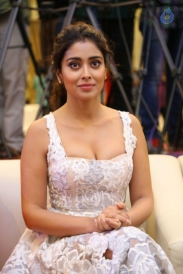 Shriya Saran Gallery - 9 of 17