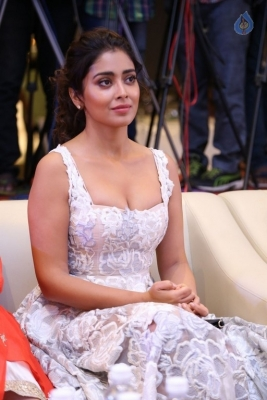 Shriya Saran Gallery - 12 of 17