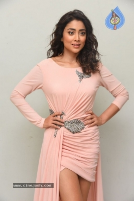 Shriya Saran Stills - 2 of 20