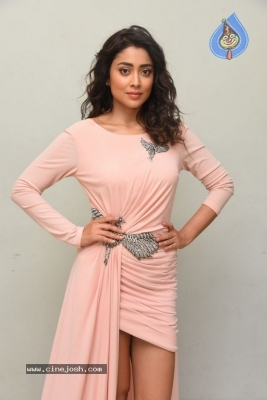 Shriya Saran Stills - 6 of 20