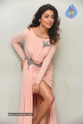 Shriya Saran Stills - 8 of 20