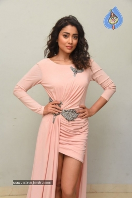 Shriya Saran Stills - 9 of 20