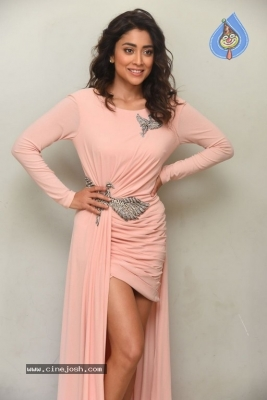 Shriya Saran Stills - 18 of 20
