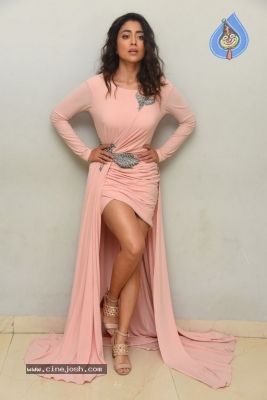 Shriya Saran Stills - 19 of 20