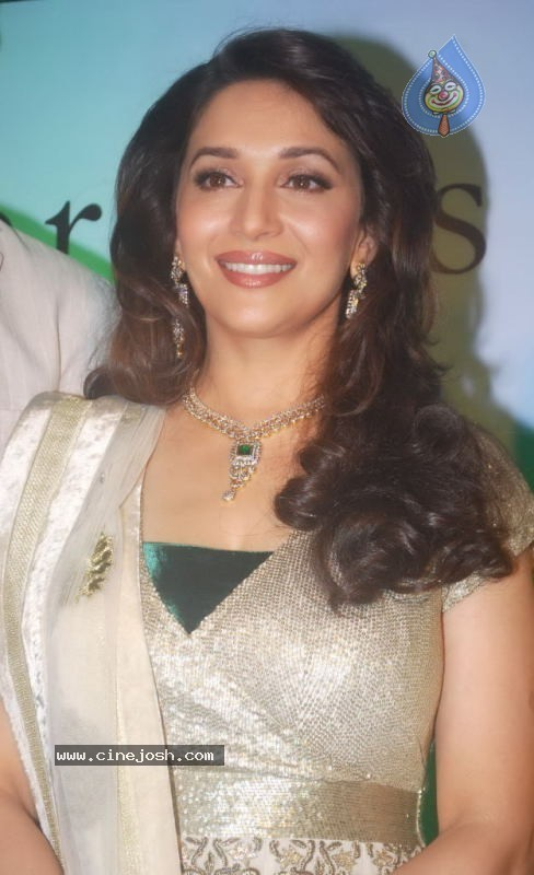 Madhuri Dixit at Emeralds for Elephants Launch - 3 / 29 photos
