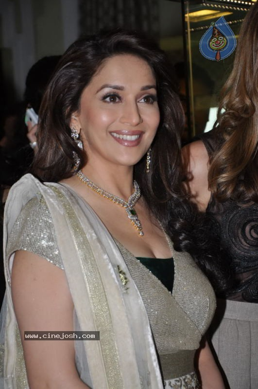 Madhuri Dixit at Emeralds for Elephants Launch - 4 / 29 photos