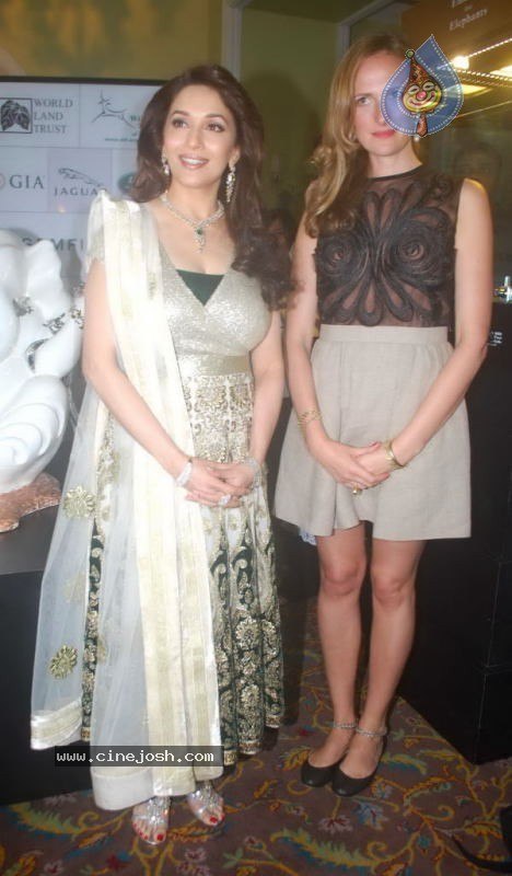 Madhuri Dixit at Emeralds for Elephants Launch - 22 / 29 photos