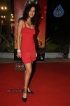 Bolly Celebs at The Global Indian Film and TV Honours 2011 - 1 of 92