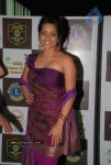 Bollywood Celebs At 16th Lions Gold Awards Function - 19 of 70