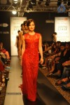 Celebs n Models Walks the Ramp at LFW 2014 - 3 of 110