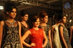 Celebs n Models Walks the Ramp at LFW 2014 - 5 of 110