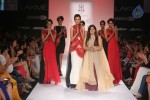 Celebs n Models Walks the Ramp at LFW 2014 - 6 of 110