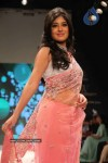 Celebs Walk the Ramp at IIJW 2011 Fashion Show - 7 of 137