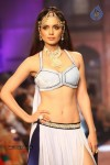 Celebs Walks the Ramp at IIJW 2013 Day 4 - 8 of 129