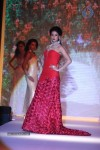 Celebs Walks the Ramp at IIJW 2013 Day 4 - 13 of 129