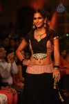 Celebs Walks the Ramp at IIJW 2013 Day 4 - 14 of 129