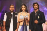 Celebs Walks the Ramp at IIJW 2013 Day 4 - 15 of 129